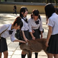 School kids petting deer, Nara, Japan | © Marijn Engels, October 2012