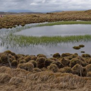 Reflective pool, Iceland | © Marijn Engels, May 2010