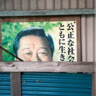 Elections, Yakushima island, Japan | © Marijn Engels, September 2012
